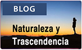 blog naturaleza y Trascendencia