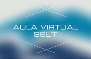 Cursos en Aula Virtual SEUT