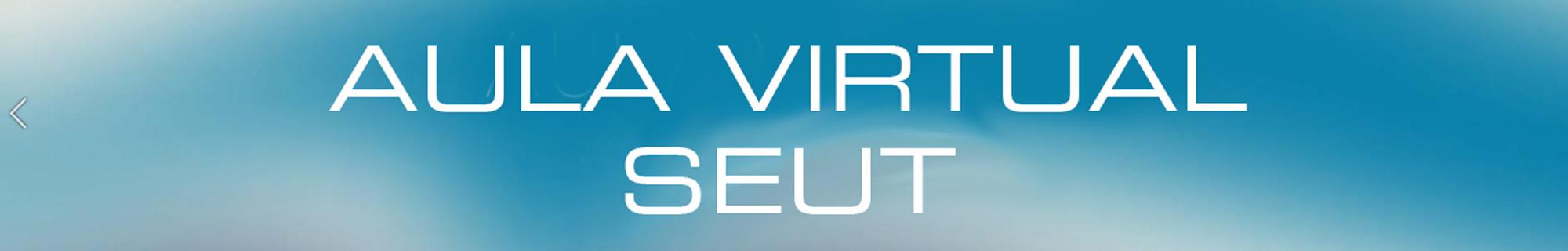 Aula Virtual SEUT