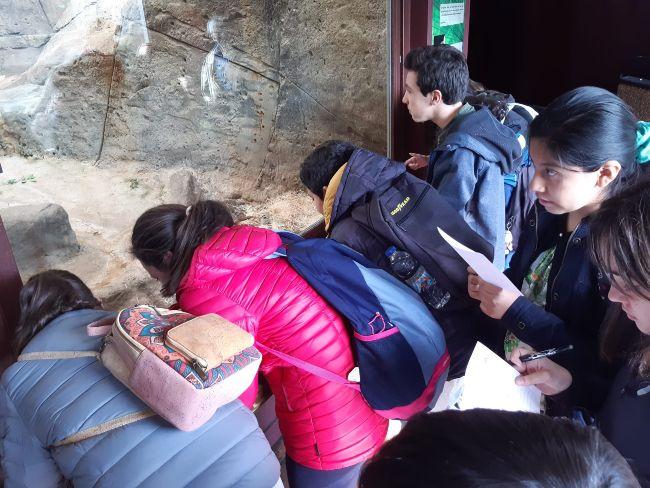 Visita al zoo Secundaria El Porvenir