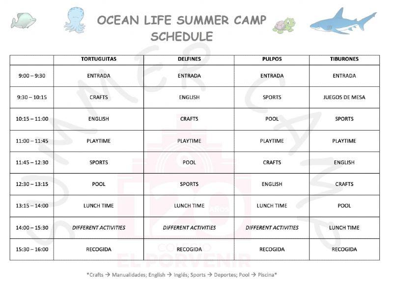 Actividades Summer Camp