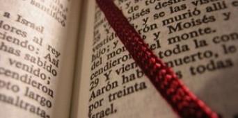 Plan lector - 3º Trimestre