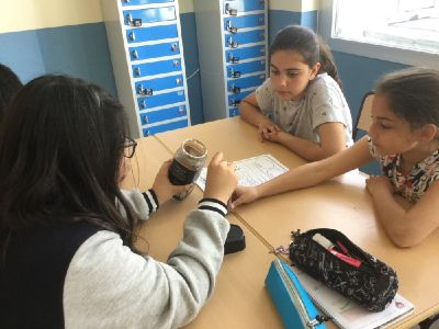 Project Science El Porvenir 6º Primaria