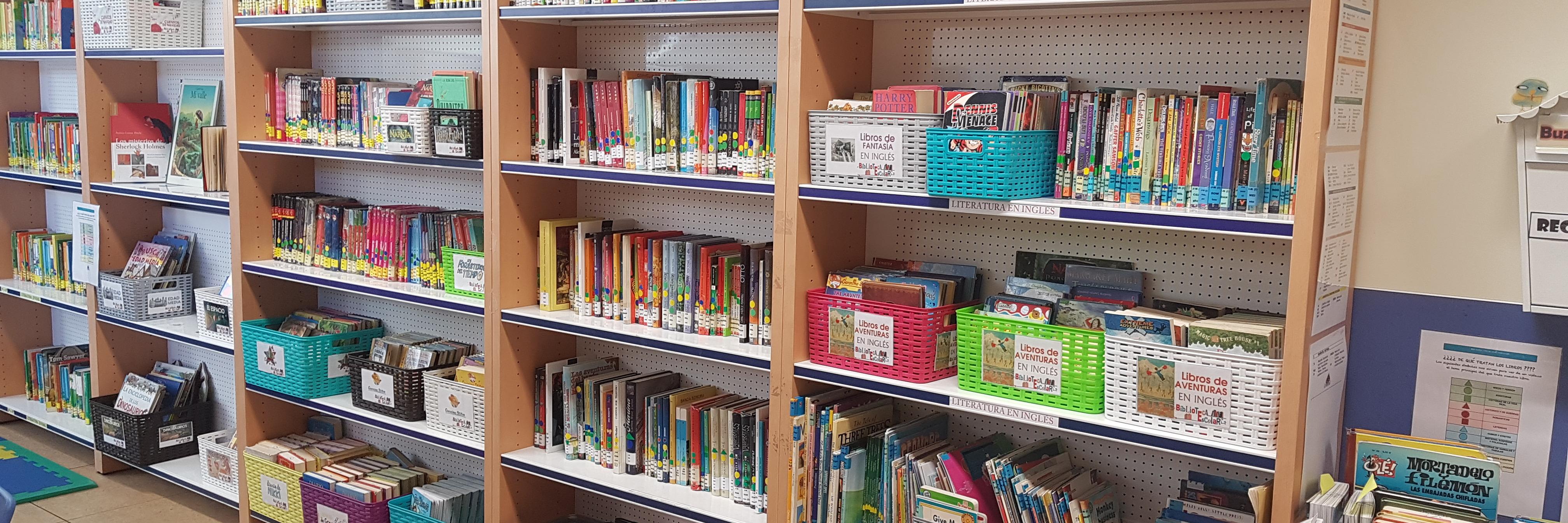 ¡Qué bien!, los alumnos de Primaria encuentran los libros y cuentos que les gusta en la biblioteca