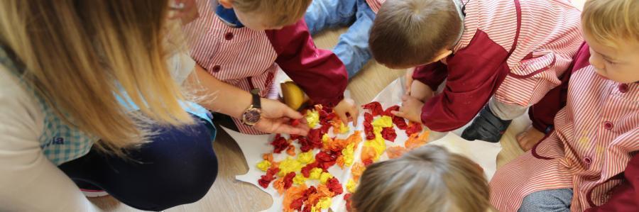 El otoño: aprendemos experimentando