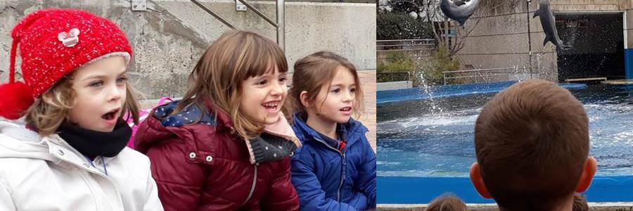 """Los niños de 5 años visitamos el zoo para conocer en vivo y en directo a """"los animales del mundo""""."""
