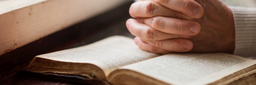 """El próximo 16 de febrero se celebra el siguiente Taller Breve """"La enfermedad en la Biblia"""""""